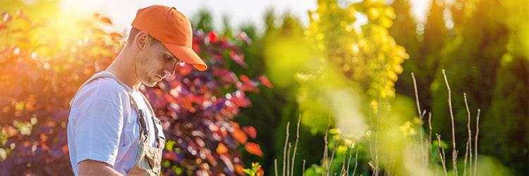 tuinman prijs
