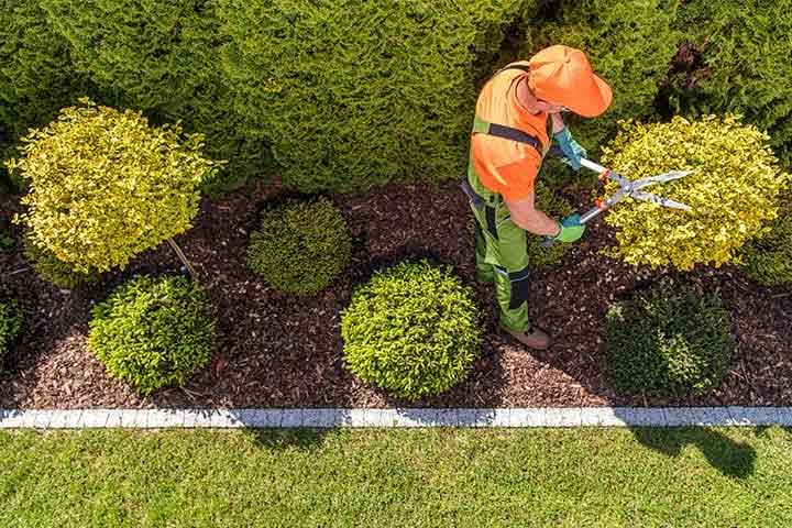 tuin laten onderhouden