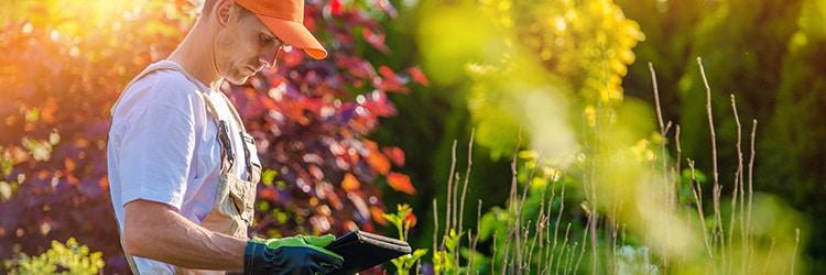 tuinaannemer werkzaamheden