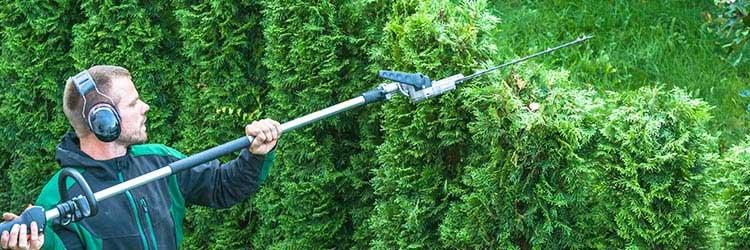 tuinman voor tuinonderhoud