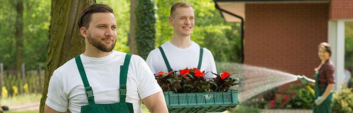 tuinmannen Willebroek